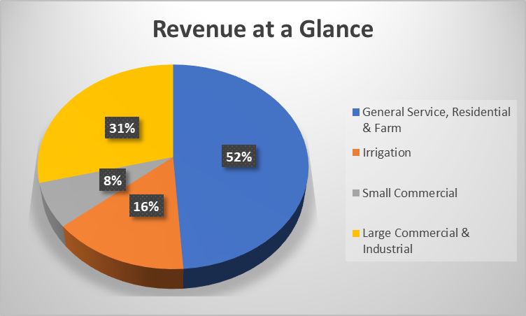 Revenue%20at%20a%20Glance.png